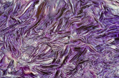 Pattern of charoite Royalty Free Stock Photography