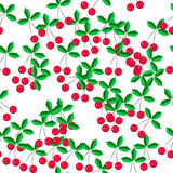 Pattern of cherries on a white background Royalty Free Stock Images