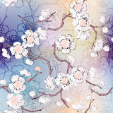 Pattern of cherry blossom. Seamless background pattern. Pattern of cherry blossom royalty free illustration