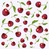 Pattern with cherry Royalty Free Stock Image