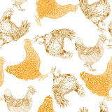 Pattern with chickens Stock Image