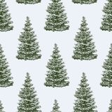 Pattern of the christmas trees. Vector pattern of the spruse trees for the christmas decorations Stock Photography