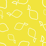 Pattern Circuit Lemons Stock Images