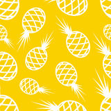 Pattern Circuit Pineapples Royalty Free Stock Images