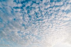 Pattern of cirrocumulus cloud on sunset blue sky Stock Photos