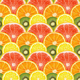 Pattern of citrus fruits Royalty Free Stock Photos