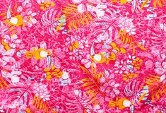 The pattern on clothes Royalty Free Stock Photos