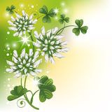 Pattern with clover Royalty Free Stock Images