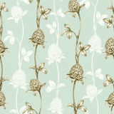 Pattern with a clover drawing Stock Photography