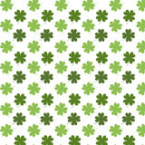 Pattern with clover. Seamless pattern with clover on white background Stock Image