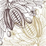 Cocoa packages pattern. Pattern of cocoa packages with beans, branch and leaves vector illustration