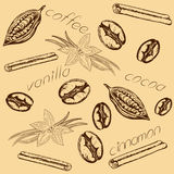 Pattern coffee cocoa vanilla cinnamon. Pattern of coffee beans, cocoa beans, pods and flowers of vanilla, cinnamon sticks and inscriptions, vanilla, coffee, coca Royalty Free Stock Photography