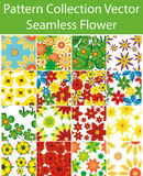 Pattern Collection Vector Seamless Flower Royalty Free Stock Photos