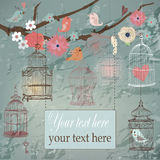 Pattern the with color cages and flowers Stock Image