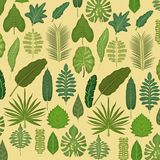 Pattern color set decorative of different types green leaves Stock Image