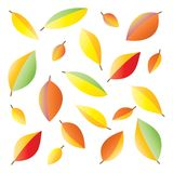 Pattern of colorful autumn leaves on a white background.  Royalty Free Illustration
