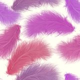 Pattern of colorful feathers. Seamless   pattern of colorful feathers Stock Photo