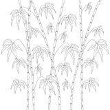 Pattern for coloring book. Background with bamboo stems Stock Photo