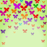 Pattern with colourful translucent butterflies Royalty Free Stock Photos