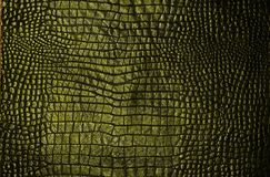 Pattern, Computer Wallpaper, Grass, Tree royalty free stock photography