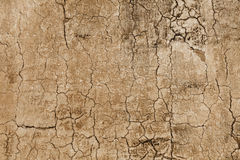 Pattern - concrete wall with cracks Stock Images
