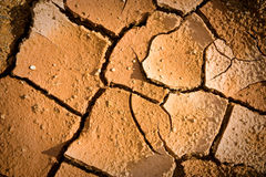Pattern of cracked soil Royalty Free Stock Photos