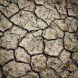 Pattern created from a photo cracked earth. Dry weather, drought. Stock Image