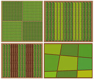 Pattern of crops from top view Stock Photo