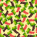 Pattern currant. Royalty Free Stock Images