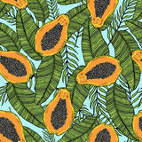 Pattern of cut papaya with tropical leaves. On a blue background. Royalty Free Stock Photography