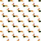 Pattern with dachshund in Christmas hat and green waistcoat Stock Images