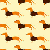 Pattern with dachshund in sunglasses Stock Photo
