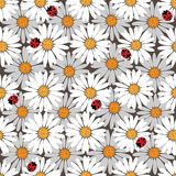 Pattern with daisies and a ladybirds Stock Image