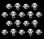 Pattern of dalmatian dog isolated on black. Pattern of dalmatian dogs isolated on black Stock Photos