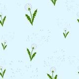 Pattern dandelions. Illustration of a loving heart.March 8 Royalty Free Illustration