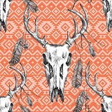 Pattern with deer scull, feathers and ornaments Royalty Free Stock Photo