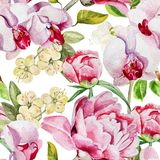 Pattern with delicate peony flowers and orchids on Royalty Free Stock Image