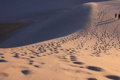 Pattern in desert Royalty Free Stock Images