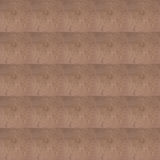 Pattern design brown cement plaster Stock Image