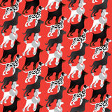 Pattern with different breeds of dogs Royalty Free Stock Photography