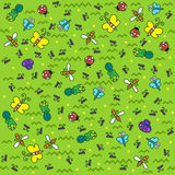 Pattern with different colored insects Royalty Free Stock Image