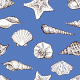 Pattern of the different sea shells Stock Photo