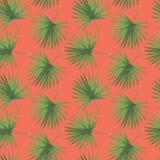 Pattern Digital paper Tropics Flowers Leaves of Monstera Palm Hibiscus Plumeria Watercolor illustrations Botanical Decorations Des stock illustration