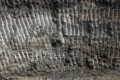 Pattern in the dirt Royalty Free Stock Image