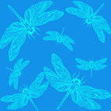Pattern dragonfly. Delicate dragonfly on a bright background Royalty Free Stock Images