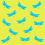 Pattern dragonfly. Delicate dragonfly on a bright background Stock Images