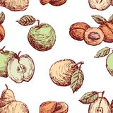 Pattern of the drawn apples,pears and peaches Stock Photo