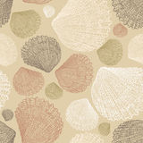 Pattern of the drawn seashells. Vector pattern of the hand drawn seashells Royalty Free Stock Photo