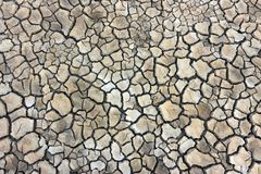 Pattern of dried an cracked ground. At low tide Royalty Free Stock Photography