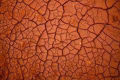 Pattern From Dry Cracked Soil In Sunlight Royalty Free Stock Photo